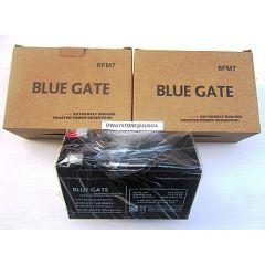 Blue Gate Ups Battery 12v9ah/20hr