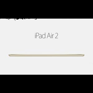 Ipad Air 2 16GB (Gold)